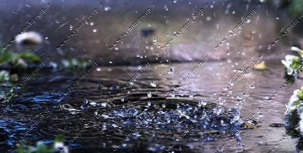 Raymon Header Rainwater treatment - تصفیه آب باران