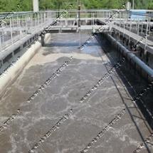 raymon-Dairy Industry Sewage4
