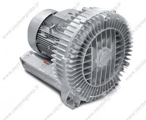 raymon blower2 300x245 - بلوئر