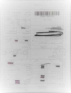گواهی گمرک آنتی اسکالانت Copy 229x300 - قیمت آنتی اسکالانت فلوکن 260  FLOCON(فروش با قیمت عمده)